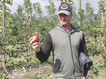 Ngāi Tahu Farming commercial development manager Ben Giesen with one of the first apples from a trial orchard at Balmoral, in the Culverden basin. Photo: Rural News Group.
