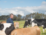 Greg Ault's herd ranks among the top in Australia for genetic merit but he doesn't use the most expensive bulls on the market.