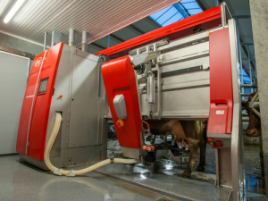 The Lely Astronaut A1 launched 25 years ago.