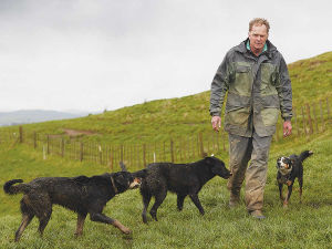 John Jackson's advancement to managing partner of the 1500 ha (14,000 stock units) coastal sheep and beef property at Te Akau, has been a progressive one over the past 28 or so years.
