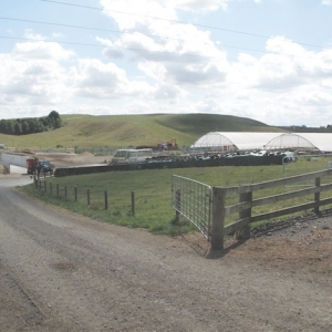 Most farms in New Zealand are family owned and operated.