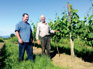 There is a resurgence of interest in big-flavoured, oaked chardonnays and East Coast grape growers and winemakers are ready to meet demand, say Gisborne Classic Chardonnay Group founding members from right, Andy Nimmo (Hihi Wines) and Paul Tietjen (TW Wines).