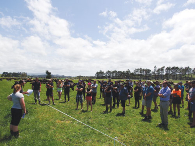 Grass proves most profitable at research farm rural news group - The most profitable orchards ...