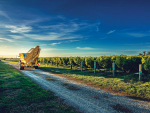 Viticulture benchmarking shows profit down – again