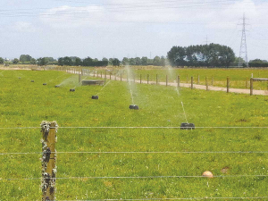 Effluent irrigation can cause trough water contamination.
