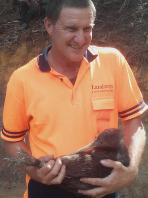 State farmer moves to save kiwi from dogs