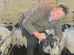 Irish farmer Eamon Nee says poor sheep prices are forcing him to seek work off farm.