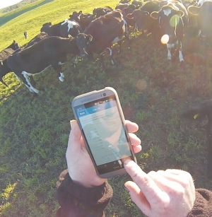 Faster broadband a boon to dairying