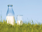 Global demand for milk remains strong.