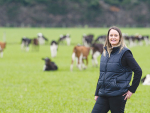 Fourth bumper dairy season looming?