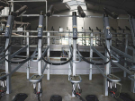 Game changer in milking shed