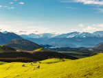 One of the largest freehold high country stations in Wanaka is now for sale.