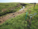 Fencing waterways is proven as effective in combatting contamination, says AgResearch's Rich McDowell.