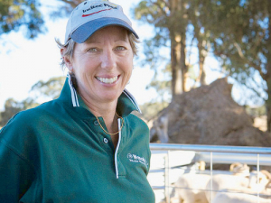 Australian livestock consultant San Jolly says maximising ewe survivability and profitability are underpinned by four key profit drivers.