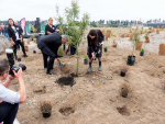 Prime Minister Jacinda Ardern and Agricultural Minister Damien O'Connnor planting a tree at Synlait's Dunsandel plant.