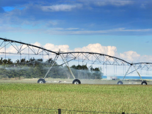 The scheme aims to irrigate 12,000ha of the Waimate District.