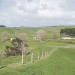 Large Waikato finishing block up for sale