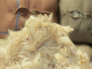 The high volume of short second shears eased slightly at the latest NZ Wool Services International's auction.