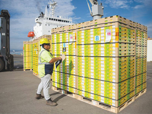 In 2016 kiwifruit exports hit $1,7b, up nearly $500m or 42% on 2015.