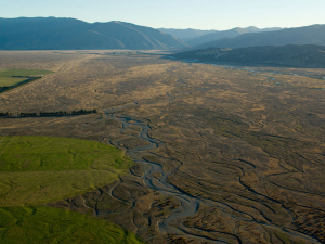 Greenpeace is opposed to dairy conversions in the Mackenzie Basin.