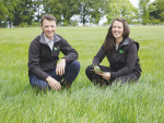 Forage grasses to be bred locally