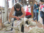 Cutting out shearing injuries