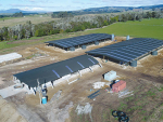 Super Organic Dairy Farm taking shape near Lake Taupo.