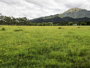 Global market settings are firmly in favour of New Zealand farmers.