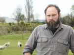 Rare breeds sheep farmer Daniel Wheeler's five pregnant ewes were slaughtered by thieves on a paddock in a Christchurch City Council reserve, where he grazes the world's only mob of Campbell Island sheep. The loss leaves him with just 30 breeding ewes.