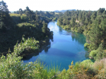 The Waikato Regional Council will hold an extraordinary meeting on Monday to consider calls to extend submission deadline on Healthy Rivers.
