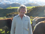 Breeding beef to reduce N leaching