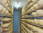 Future use of popular cheese names by NZ cheesemakers could be prohibited.