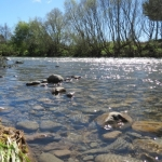 A new start for freshwater management