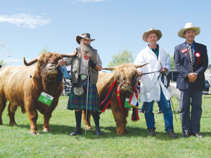The Canterbury A&P Association has released a list of protocols to enable cattle to be displayed at this year's show.