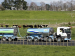 Kiwis can thank dairy sector for $17.5b exports