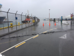 Implications of Wellington port damage