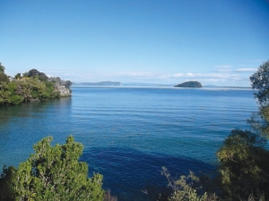 Getting nitrogen leaching load down is crucial to ensuring Lake Taupo's health.