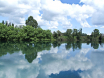 Waikato Regional Council has received a record over 1000 submissions on Healthy Rivers.