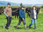 Farms wanted for progeny testing