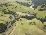 Detention bunds in Northland slow water flows, remove sediment and improves catchment resilience.