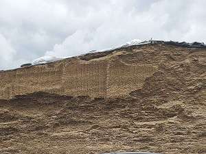Why make stink silage?