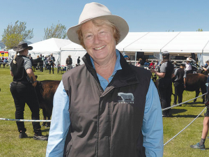 Kay Worthington at the cattle ring of the New Zealand Agricultural Show where Rangiora High School students were presenting her entries in the Lowline yearling heifer class. Photo: Rural News Group.