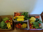 Local fruit, vege home deliveries ok — MBIE