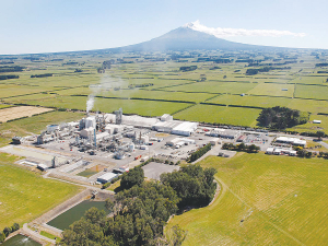 Ballance is exploring 'green' hydrogen and urea project at its Kapuni plant.