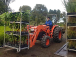 Naki sets native planting record