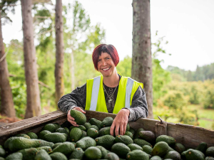Avocado growers appoint first woman president