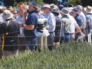 Farmers catch up while exploring FAR's trial farm at Chertsey, Mid Canterbury, earlier this month.