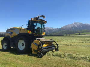 Canterbury-based rural contractor Steve Murray reckons his newest New Holland, self-propelled, forage havester – a FR650 – is in a league of its own.