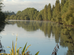 Farmers urge landowners to get on board for Healthy Rivers