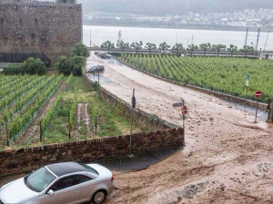 More than two tonnes of topsoil were lost during a heavy rain event at Kloster Eberbach vineyards last year.